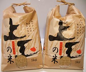 rice012