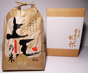 rice011
